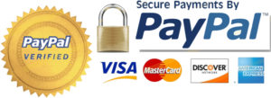 secure transaction paypal